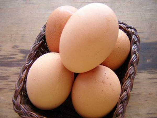 10 fakta unik tentang telur