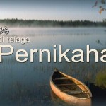 Salah Kaprah Resepsi Walimah (II)