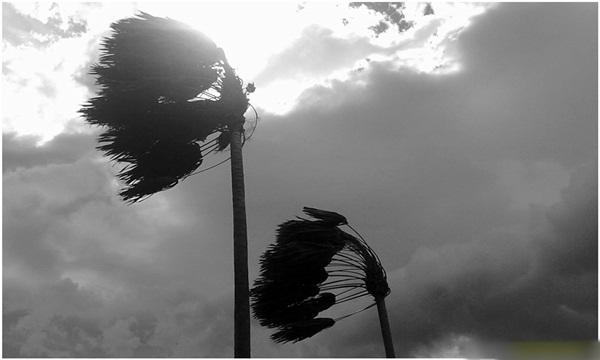 Hukum Mencela Angin