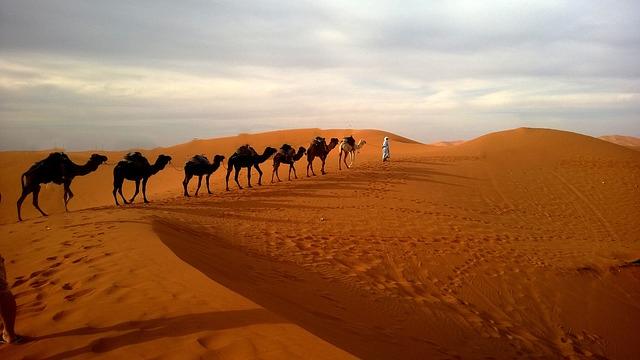 Uwais Dan 'Umar bin Khoththob