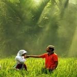 Ajari Anak Taat Pada Orang Tua