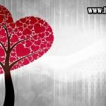 Indahnya Pernikahan Sesuai Syari'at Islam (Bagian 2)